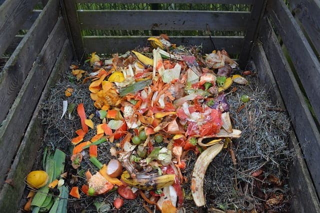 Prepare Organic Compost At Home